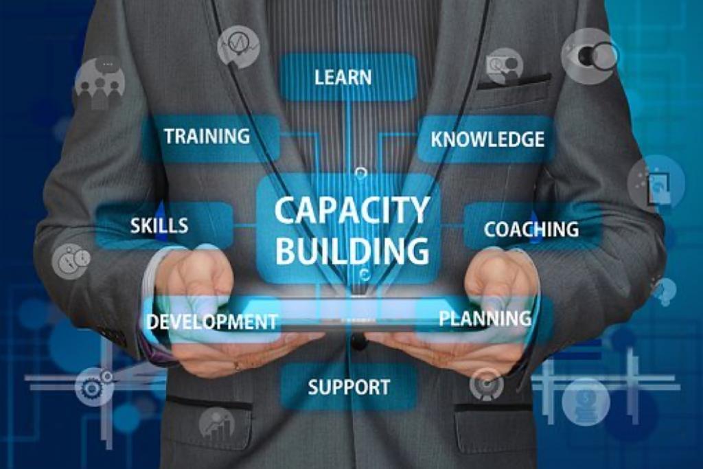 Capcity building