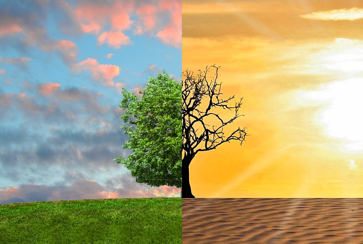 Climate Change Enviro
