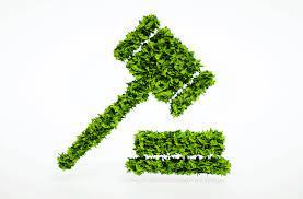 Environmental Litigation & Enforcement