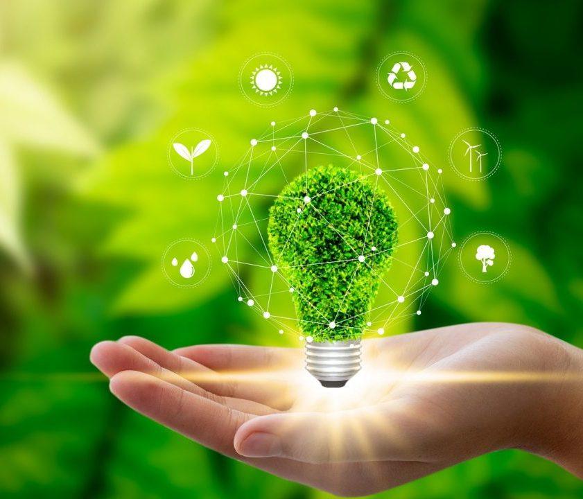 Environmental-management