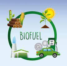 Renewable Energy And Bio fuels 1
